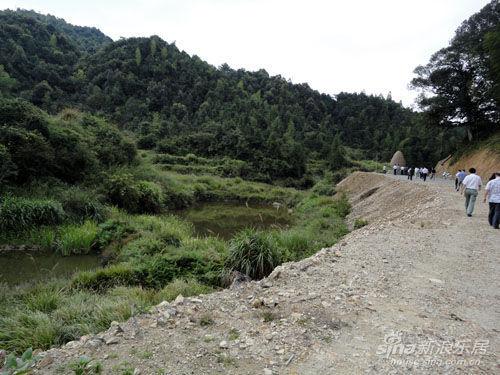 西苑乡木兰溪源头生态林
